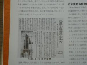 DSC01153