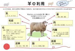 S羊の利用
