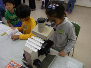 顕微鏡検査トリミング