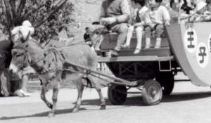 ロバの馬車