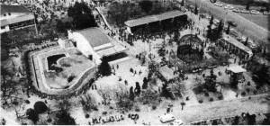 1955年の動物園